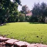דשא סינטטי לגינה – למראה ירוק כל השנה