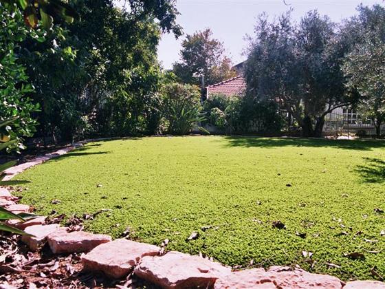 דשא סינטטי לגינה, התמונה באדיבות חברת דשא עוז