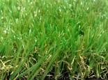 דשא סינטטי ירוק לתמיד - המלצות וטיפים | צרכנות נבונה